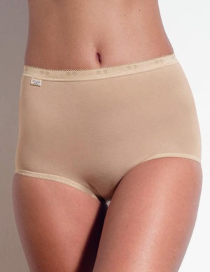 Sloggi Basic Maxi Briefs 2 Pair Pack